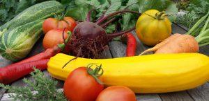 Gartengemüse aus dem eigenen Garten